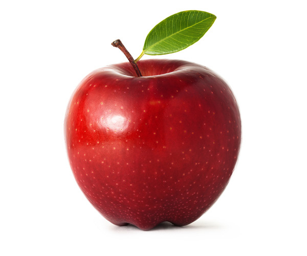 با انواع گوناگون درخت سیب آشنا شوید