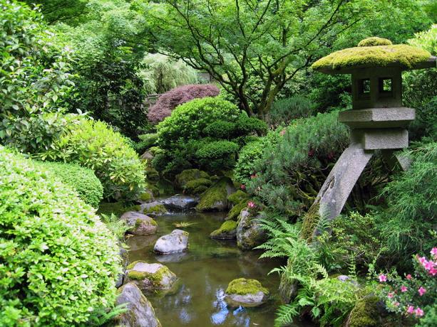 نرم افزار طراحی باغ و فضای سبز