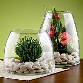 مواد لازم برای تراریوم (باغ شیشه ای ) - گیاهان اپارتمانی.بنفشه ...مواد لازم برای تراریوم (باغ شیشه ای ) 1- ظرف دهان گشاد مثل گلدان - تنگ ماهی  -شیشه های خالی شکلات یا سس و البته آکواریم