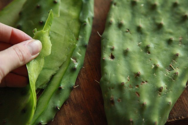 Benefits of Cactus Leaf in the Diet